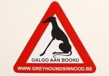 Galgo sticker