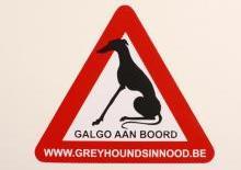 Galgo à bord